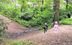 A Walk in the Park? Connecting a Child's Early Childhood Experience with School. Authors: Christina Leef, Lorraine Sands and Melissa Osmond